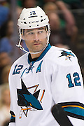 DALLAS, TX - OCTOBER 17:  Patrick Marleau #12 of the San Jose Sharks looks on against the Dallas Stars on October 17, 2013 at the American Airlines Center in Dallas, Texas.  (Photo by Cooper Neill/Getty Images) *** Local Caption *** Patrick Marleau