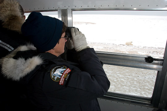 A guest views polar bears from the Tundra Buggy.