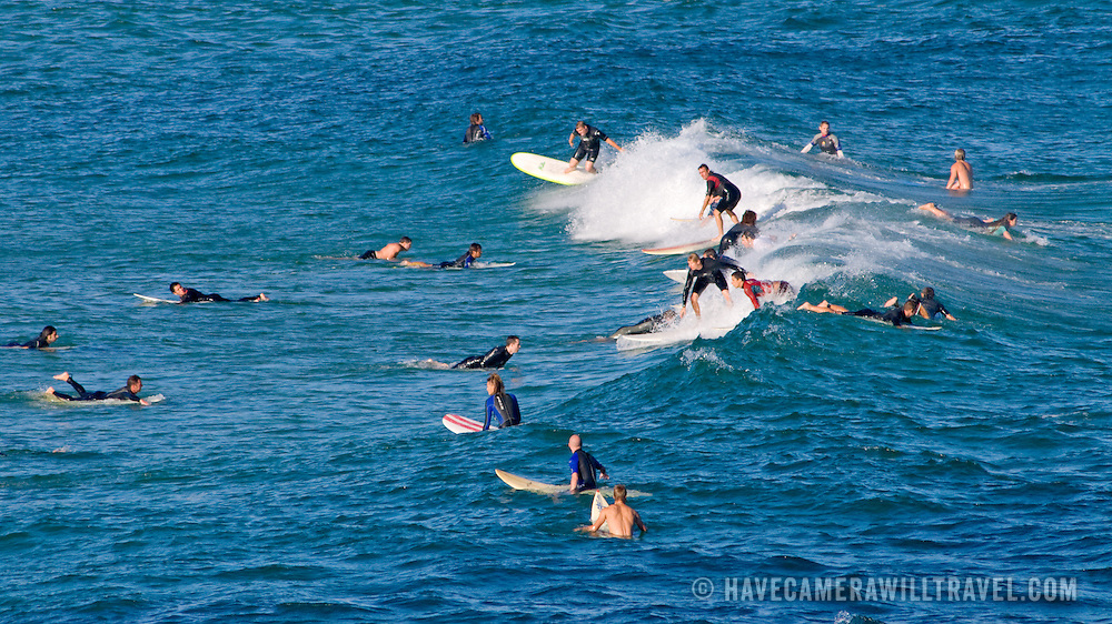 Surfers waiting for a wave at Bondi Beach, Sydney, New South Wales, Australia