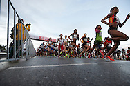 PORT ELIZABETH, SOUTH AFRICA - JULY 30: Irvette van Zyl of AGN (203) at the start during the SA Half Marathon Championships on July 30, 2016 in Port Elizabeth, South Africa. (Photo by Roger Sedres/Gallo Images)