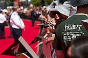 The Hobbit : An Unexpected Journey Premiere