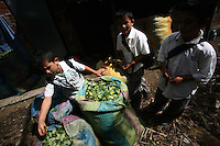Schoolboys look at bags of coca leaves at a coca lab in a in a remote area of the southern Colombian state of Nariño, on Monday, June 25, 2007. Although government efforts to eradicate coca have reached many parts of Colombia, still the coca business thrives. (Photo/Scott Dalton)