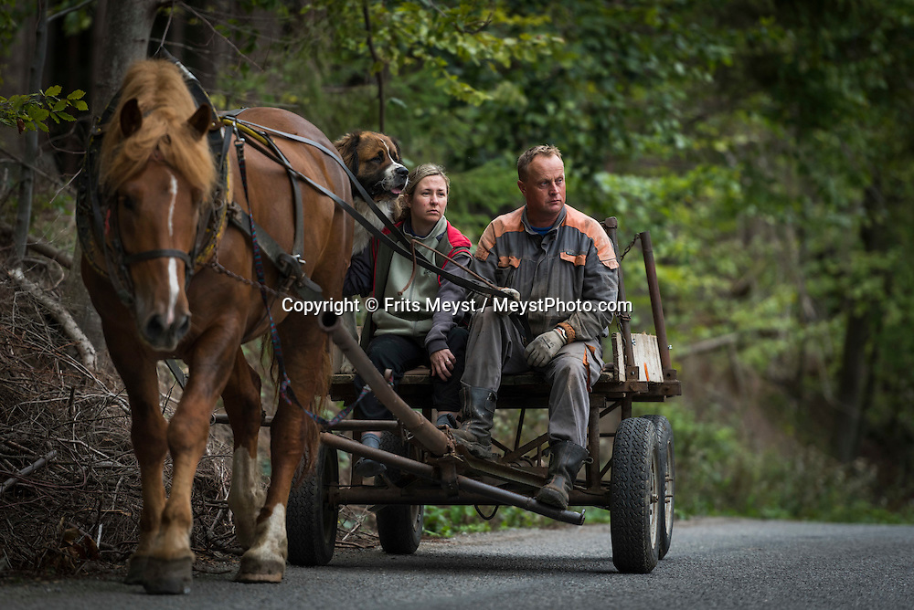 Cisov, Moravia, Czech Republic, September 2015. A man a dog and his wife on a horse cart in Czeski Kanada. Čížov is a small village lying about 8 kilometres to the east of Vranov. The Visitors Centre of the Podyjí National Park Administration with a permanent exposition about the Park's nature, also the visitors can see the only preserved part of a wire fence of the Iron Curtain. Čížov is the ideal starting point for excursions to both parts of the NP on either the Czech or the Austrian side of the Dyje River. Southern Moravia is most famous for its wine,  rolling hills and pretty landscapes. Photo by Frits Meyst / MeystPhoto.com