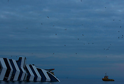 Seagulls fly near the cruise liner Costa Concordia, which ran aground off the west coast of Italy, at dusk at Giglio island January 27, 2012. Costa Cruises has offered to pay 11,000 euros ($14,500) in compensation to each of the more than 3,000 passengers aboard the ship that capsized near the island of Giglio two weeks ago, Italian consumer groups said on Friday. <br /> REUTERS/Darrin Zammit Lupi (ITALY)