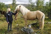 Denne skjønnheten er er palomino-farget islandshest, hingsten Harry, som treåring. Gikk med sin første hoppeflokk, 11 dyr, i Stugudal i Tydal sommeren 2004. Oppdretter: An_agritt Morset, Tydal.