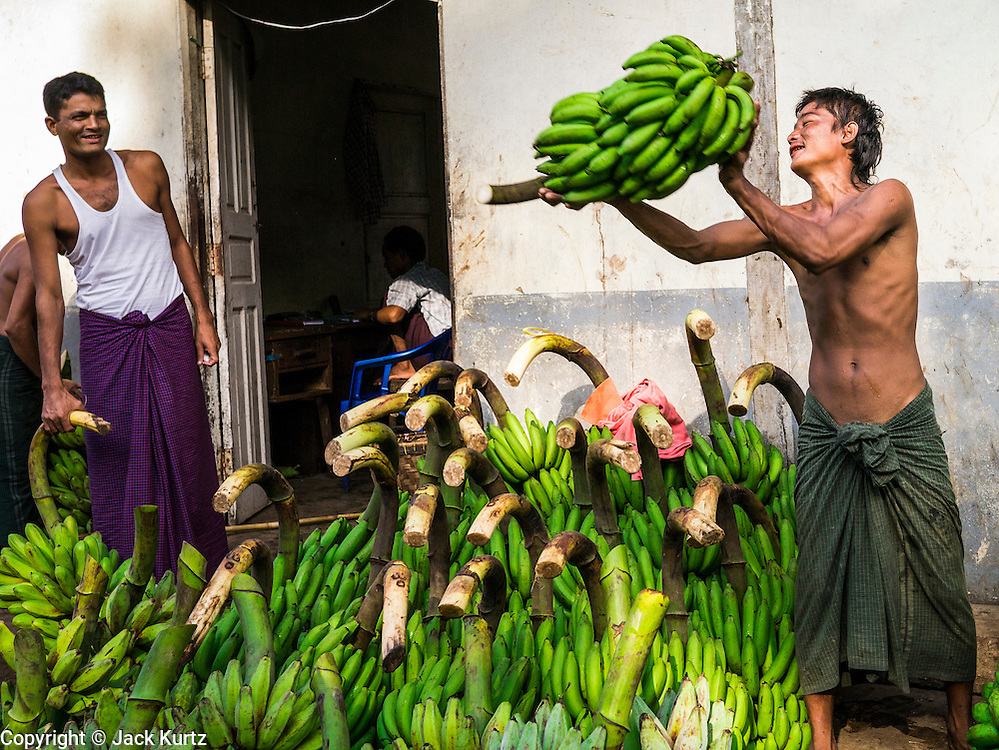 17 JUNE 2013 - YANGON, MYANMAR: A man catches a stalk of green bananas near a river pier in Yangon. The bananas will be taken to markets for sale in Yangon. Yangon, formerly Rangoon, is the largest city in Myanmar. It is the former capital of the Southeast Asian country. It's still Myanmar's economic capital.      PHOTO BY JACK KURTZ