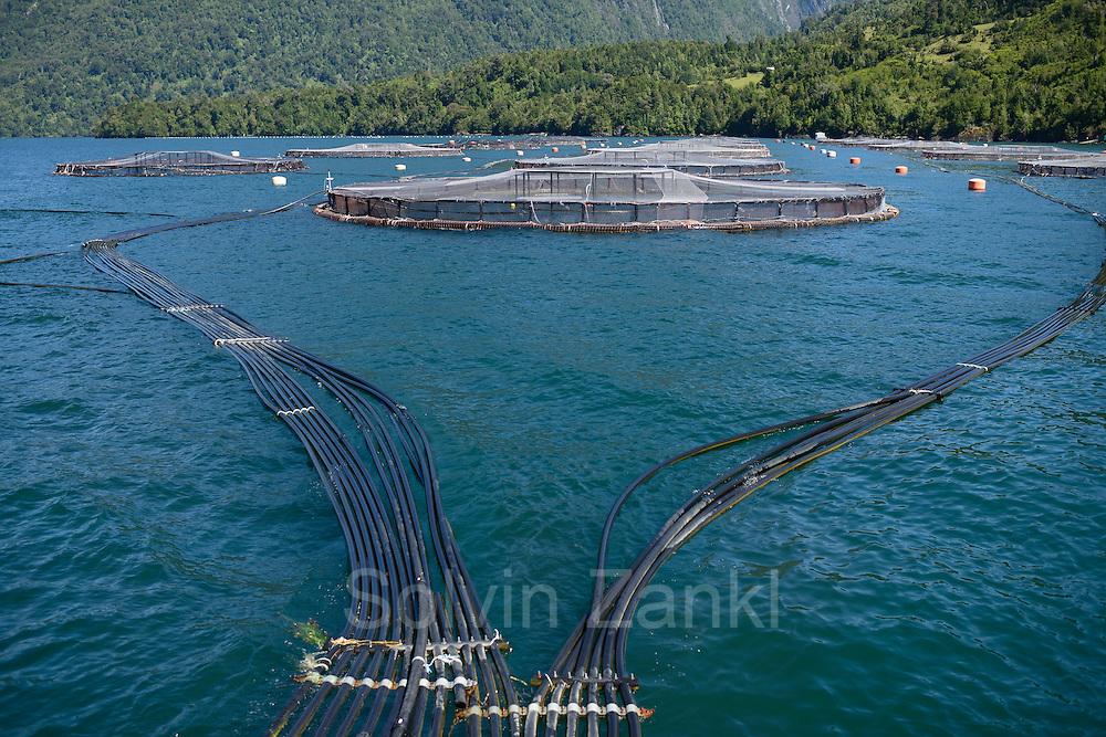 Moderne Lachsfarm im Chile. Comau Fjord, Patagonia, Chile |