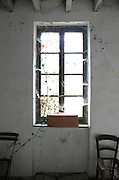 window in an old abandoned house