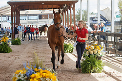 Klaphake Laura, GER, Catch Me If You Can 21<br /> World Equestrian Games - Tryon 2018<br /> © Hippo Foto - Dirk Caremans<br /> 17/09/2018