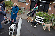 Pet dog owners gather their assorted breeds for an Instagram 'shoot'for the Dulwich Village Insta feed, outside St. Barnabas community hall in Dulwich Village, Southwark, serving as a polling station for the UK's General Election, 2 weeks before Christmas, on 12th December 2019, in London, England.