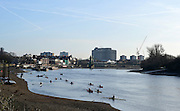 """London. ENGLAND. Saturday 26/01/2013 2013 Quintin Head, River Thames. ..Description - General Views, Hammersmith Bend, Crews; Rowing, Sculling boats and Canoes on the water...[Mandatory Credit: Peter Spurrier/Intersport Images]..[Head Race: Processional"""" Time Trial].."""
