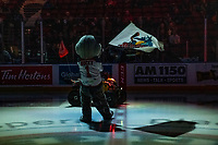 KELOWNA, CANADA - NOVEMBER 23:  Rocky Raccoon, the mascot of the Kelowna Rockets stands on the ice at the start of the game against the Victoria Royals on November 23, 2018 at Prospera Place in Kelowna, British Columbia, Canada.  (Photo by Marissa Baecker/Shoot the Breeze)