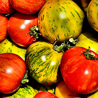 Green Zebra and Red Tomatoes at Farmers Market in Vancouver, Canada