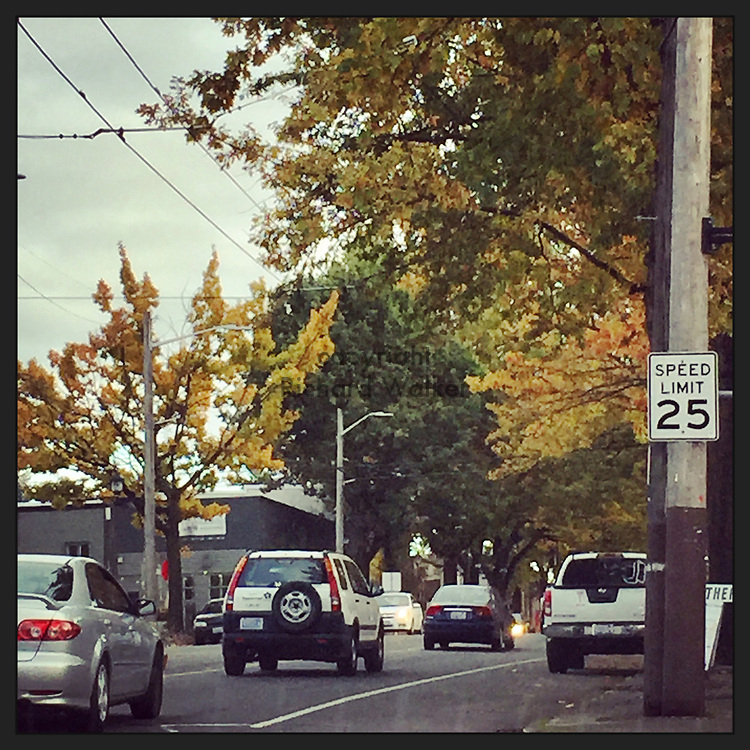 2017 OCTOBER 23 - Autumn view looking south along Rainier Ave S in Hillman City, Seattle, WA, USA. Taken with Apple iPhone and processed through Instagram app. By Richard Walker