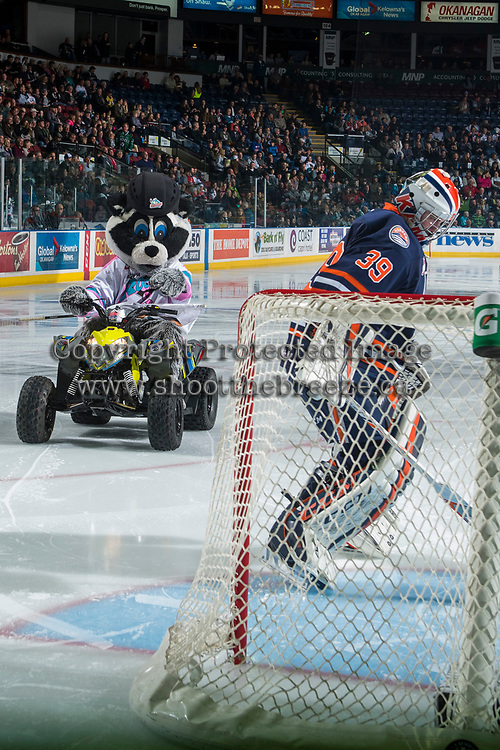 KELOWNA, CANADA - MARCH 31: Rocky Racoon, the mascot of the Kelowna Rockets, rides off the ice on his Polaris quad past Connor Ingram #39 of the Kamloops Blazers on March 31, 2017 at Prospera Place in Kelowna, British Columbia, Canada.  (Photo by Marissa Baecker/Shoot the Breeze)  *** Local Caption ***