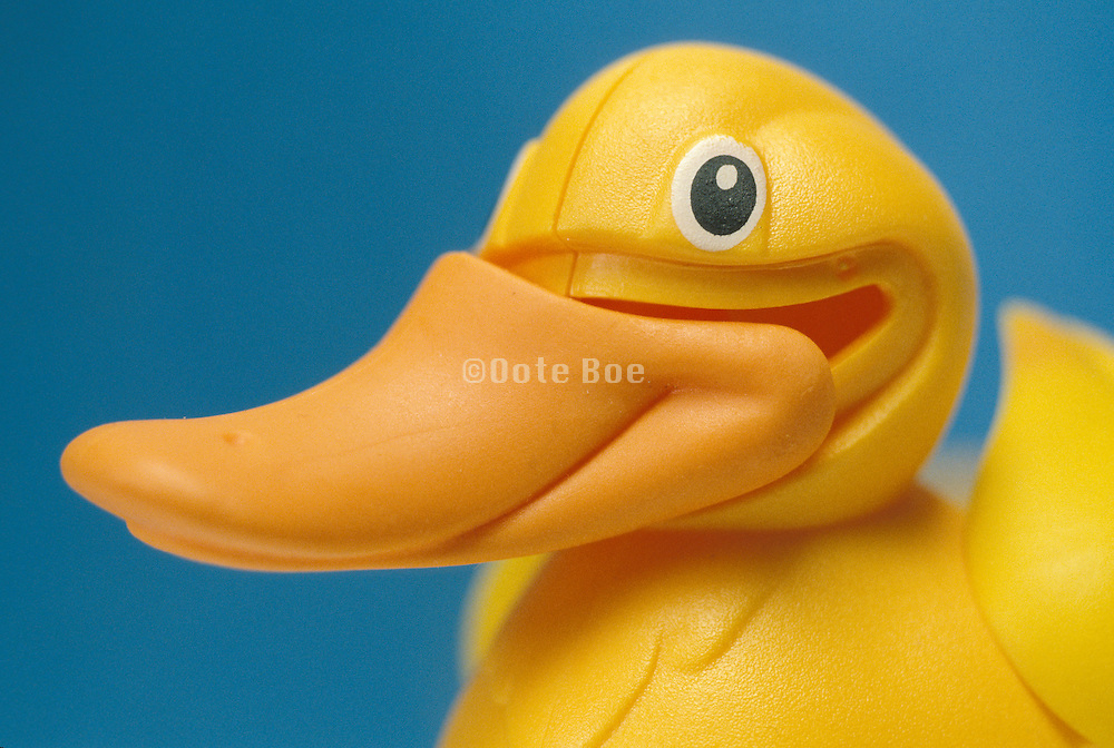 Rubber ducky with displaced beak