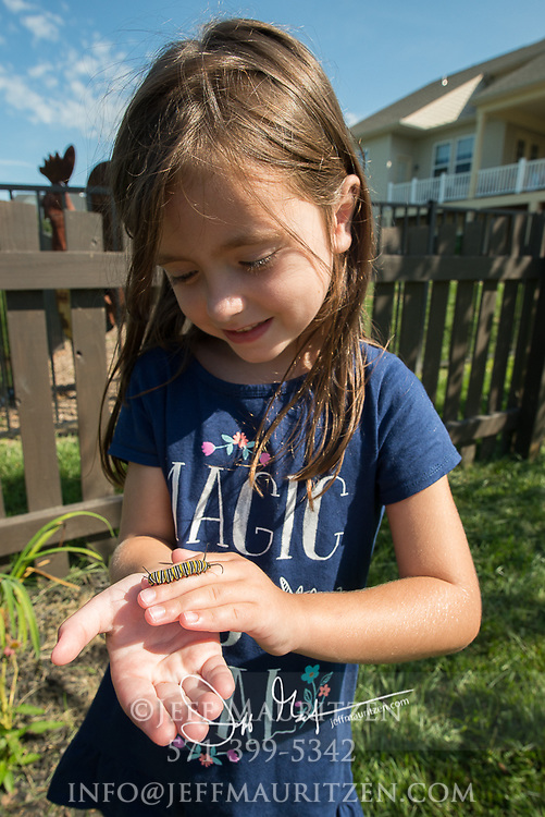 A young girl holds a monarch catepillar in her hands in a backyard residential setting.