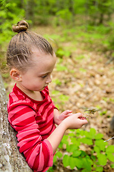 A young girl holds a dragonfly at the Orris Falls Preserve in South Berwick, Maine.