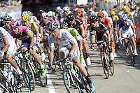 Petacchi Alessandro  -   Southeast   - 10.05.2015 - 2eme etape du Giro 2015<br />Photo : Sirotti / Icon Sport
