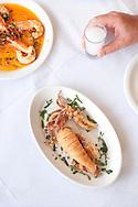 Fried calamari,, shrimps in garlic sauce, served at Myrivili's Mulberry Tavern, Skala Skamnias, Lesbos, Greece