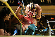 Halcon de Oro gets bitten by Poder 7 during a Lucha Libre match at McAllen's Club Fuego.