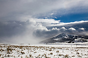A snow squall crosses Yellowstone's Lamar Valley in winter.