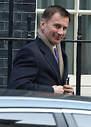 © Licensed to London News Pictures. 05/03/2013. Westminster, UK Health Secretary Jeremy Hunt. Ministers after a Cabinet Meeting at number 10 Downing Street on 5th March 2013. Photo credit : Stephen Simpson/LNP
