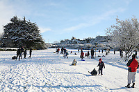 Tobogganing on Killiney Hill Dublin in the show November 2010