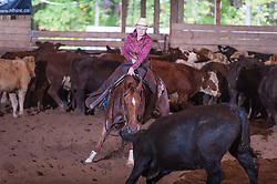 September 23, 2017 - Minshall Farm Cutting 5, held at Minshall Farms, Hillsburgh Ontario. The event was put on by the Ontario Cutting Horse Association. Riding in the Non-Pro Class is Amy Delange on A Spoonful of Style owned by the rider.