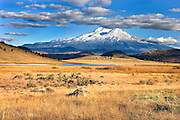 autumn grasses in prarie with Mt. Shasta in the distance, California, USA