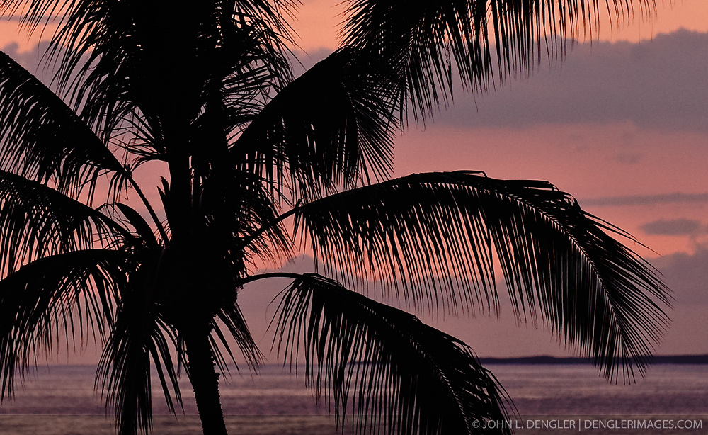 The setting sun sets behind a palm tree at sunset as seen from the Keauhou Beach Resort next to Kahaluu Beach Park in Keauhou on the Big Island of Hawaii.