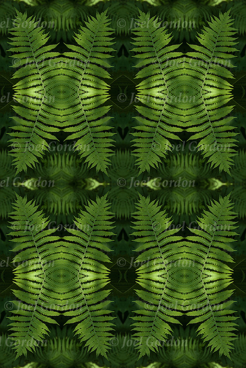 Colorful green fern plant foliage, a  photographic series of digital computer art <br /> <br /> Two or more layers or generations were used to enhance, alter, manipulate the image, creating an abstract