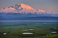 Denali National Park with Mt. McKinley towering in the distance.