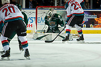 KELOWNA, CANADA - FEBRUARY 15:  Max Palaga #31 of the Everett Silvertips defends the net during first period against the Kelowna Rockets on February 15, 2019 at Prospera Place in Kelowna, British Columbia, Canada.  (Photo by Marissa Baecker/Shoot the Breeze)