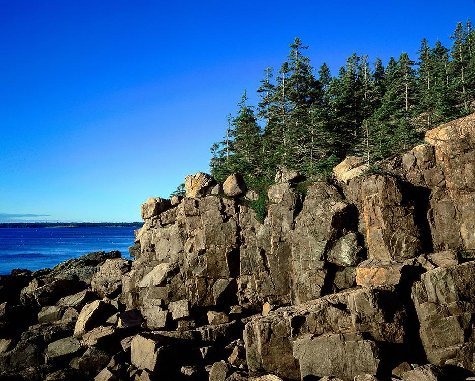 Rocky coastline, Mt Desert Island, Acadia, Maine