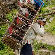 Annapurna - Porters