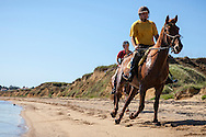Couple On Beach Riding Horses, Croatia, Dalmatia, Europe