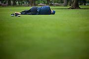 Man having a siesta on a park grass