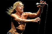 BYRON BAY, AUSTRALIA - MARCH 30:  Iggy Pop performs on stage with his band Iggy and the Stooges at Bluesfest Byron Bay 2013 - Day 3 on March 30, 2013 in Byron Bay, Australia.  (Photo by Matt Roberts/Getty Images)