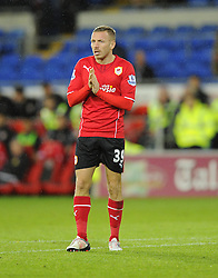 Cardiff City's Craig Bellamy rubs his hand - Photo mandatory by-line: Joe Meredith/JMP - Tel: Mobile: 07966 386802 03/11/2013 - SPORT - FOOTBALL - The Cardiff City Stadium - Cardiff - Cardiff City v Swansea City - Barclays Premier League