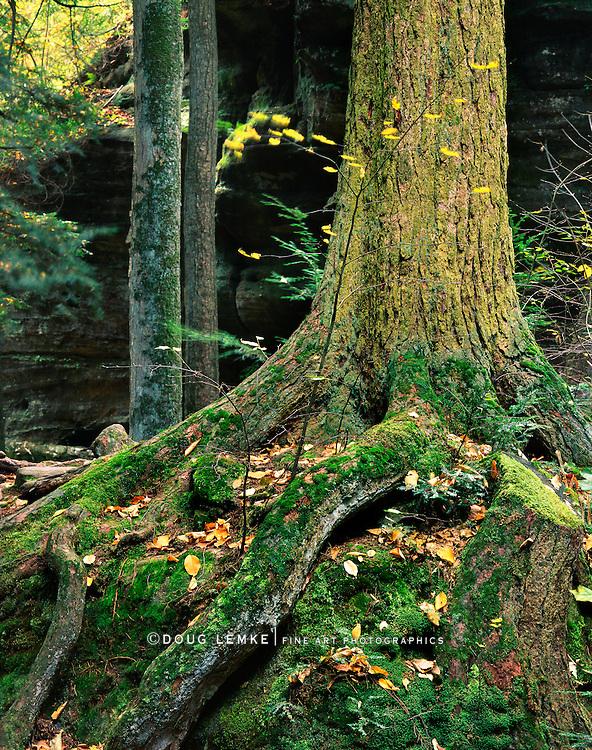 Old Man's Cave, Hocking Hills, Ohio