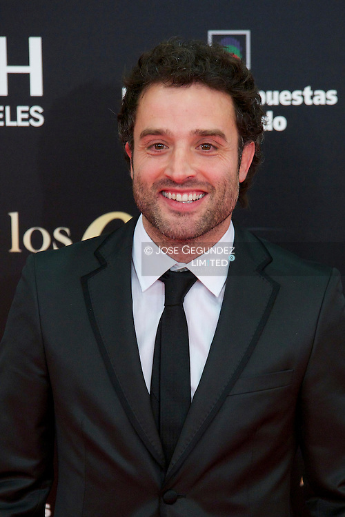 Daniel Guzman arrives to Goya Cinema Awards 2013 ceremony, at Auditorium Hotel on February 17, 2013 in Madrid, Spain