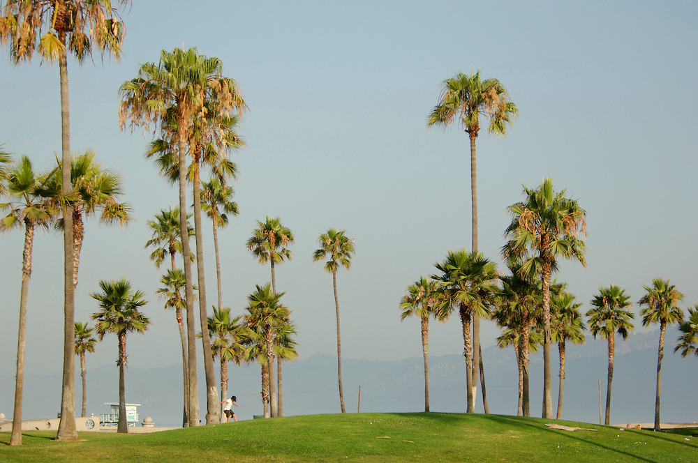 Venice Beach, Venice, Los Angeles, California, United States of America
