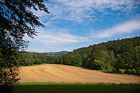 Pastoral view of field surrounded by forest, looking toward the village of Birmensdorf.