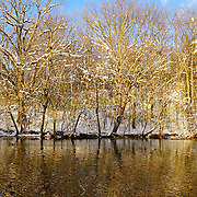 &quot;Winter in Gold&quot; <br /> <br /> What a gorgeous winter afternoon with a river of gold!