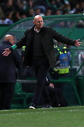 February 3, 2019 - Lisbon, Portugal - Sporting's head coach Marcel Keizer from Netherlands  reacts during the Portuguese League football match Sporting CP vs SL Benfica at Alvalade stadium in Lisbon, Portugal on February 3, 2019. (Credit Image: © Pedro Fiuza/NurPhoto via ZUMA Press)