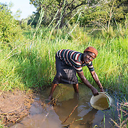 CAPTION: Chinheva collects water from a river to water her crops. When the Bindagombe Irrigation Scheme is handed over to its beneficiaries, farmers will no longer have to carry water from rivers in order to water their crops. LOCATION: Mawoneke Village, Chivi District, Masvingo Province, Zimbabwe. INDIVIDUAL(S) PHOTOGRAPHED: Chinheva Musayemura.