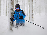 An alpine skier squeezes between aspen trees as he skies through fresh, powder snow, Steamboat Springs, Colorado.