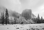 Wall Art - Storm in Yosemite (Landscape)