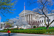 Washington, DC, Supreme Court, Building, colonnade, steps, District of Columbia, Nations Capital, Cherry Blossoms, Memorial, Parks, National Mall, Washington DC Beautiful, Unique US, Supreme Court, Building, Main entrance, colonnade, steps, and statues,